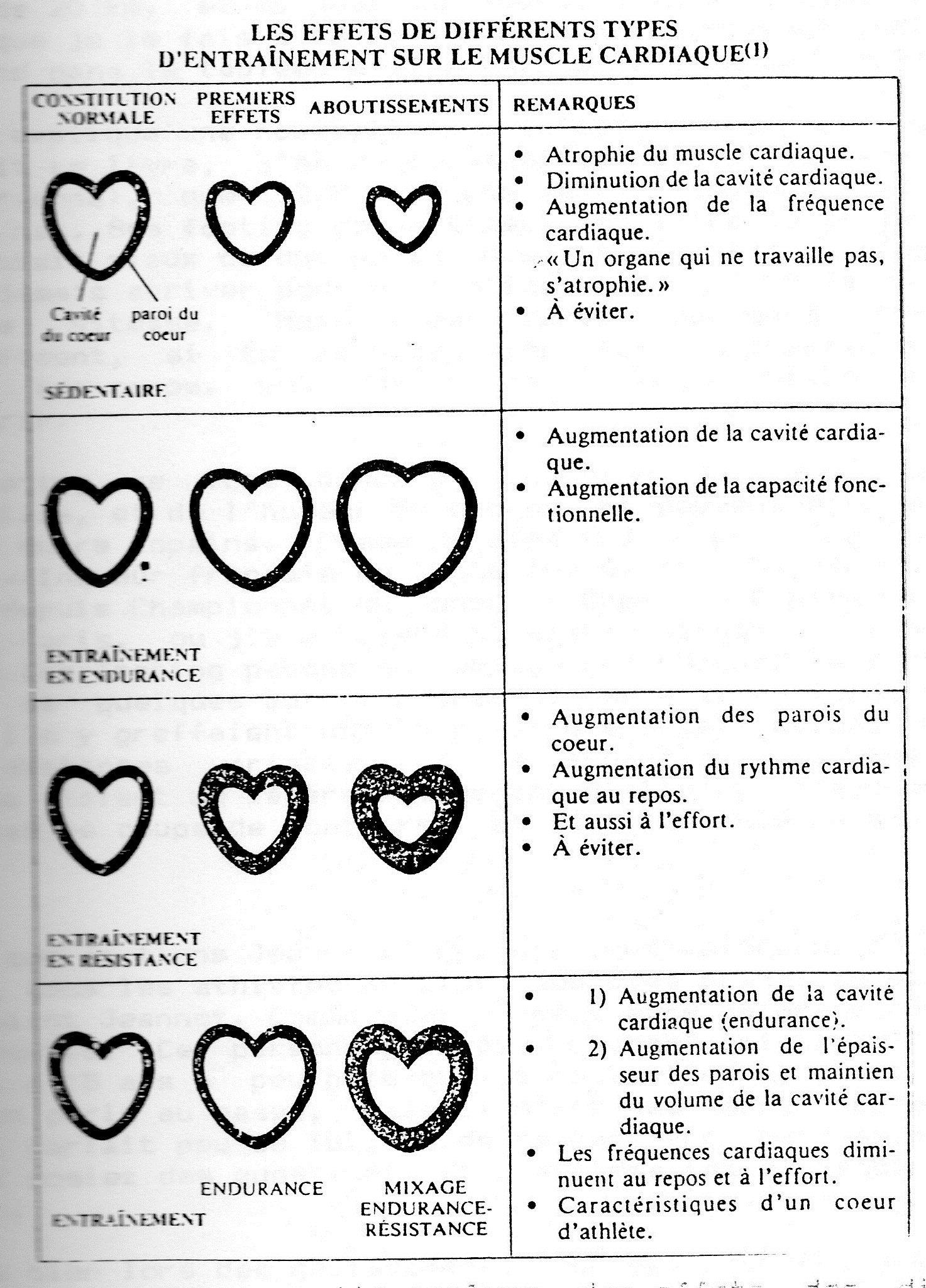 Augmentation volume du coeur 9fd0ff13b00